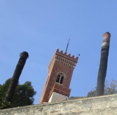 Borghetto palme malate a Castello Borelli